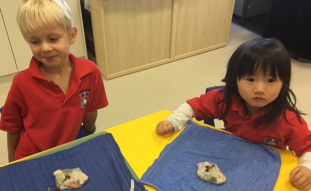 A-Look-Back-at-Term-2-in-Kindy-2018-004.jpg
