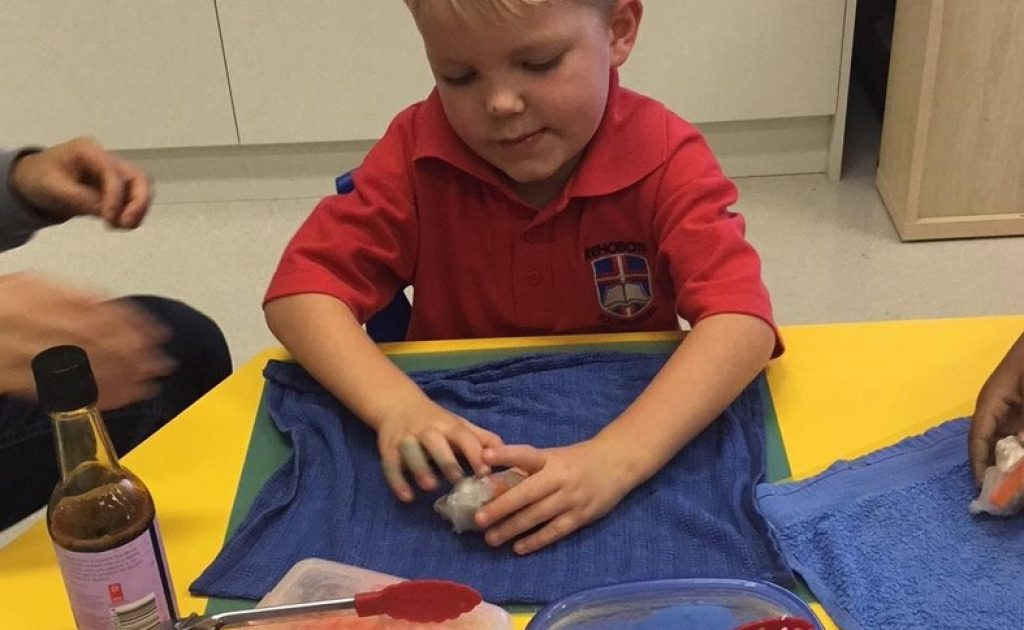 A-Look-Back-at-Term-2-in-Kindy-2018-005.jpg